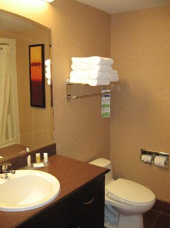 Quality Inn & Suites Levis: Bathroom in room 210