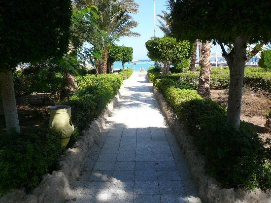 weg vom zimmer zum strand  Festival Shedwan Golden Beach Resort 3*, Єгипет,  Хургада - photo