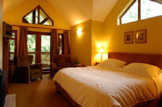 Whistler Alpine Chalet Retreat & Wellness: Whislter Inn