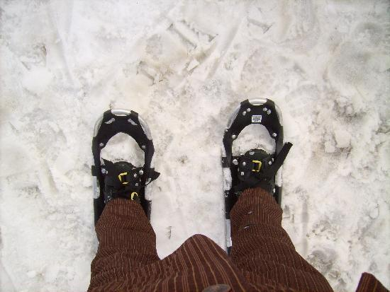 Hotel Turracherhof: Wandering with snow shoes