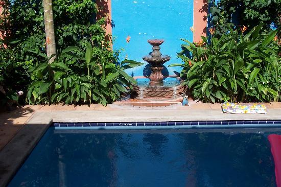 Casa Silas B & B: Pool and fountain