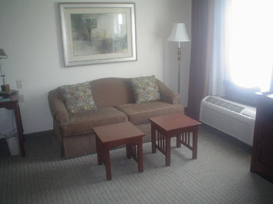 Staybridge Suites Tampa East - Brandon: living room area