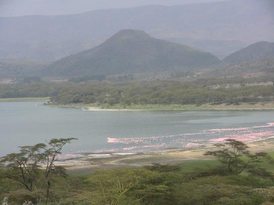 Hippo Point & Dodo's Tower : General view from the top of the sanctuary