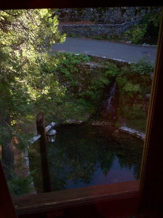 Oregon Caves Lodge: View out your window in Room 201