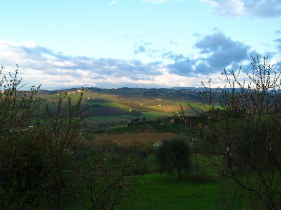 Villa Le Torri: Tuscany - on the drive back to the villa