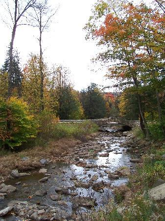 Allegany State Park Campground 사진