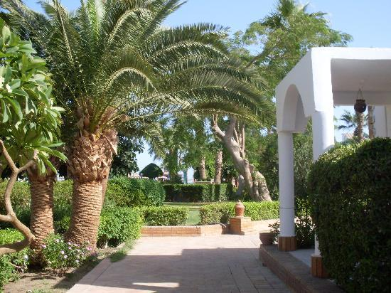 Al Mashrabiya : hotel area