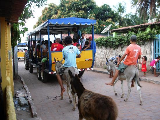 Brasil Tropical Village: Pipa