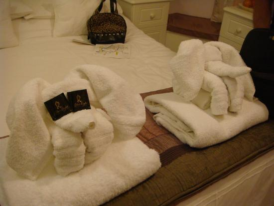 White Rose Lodge: Adorable folded towels!