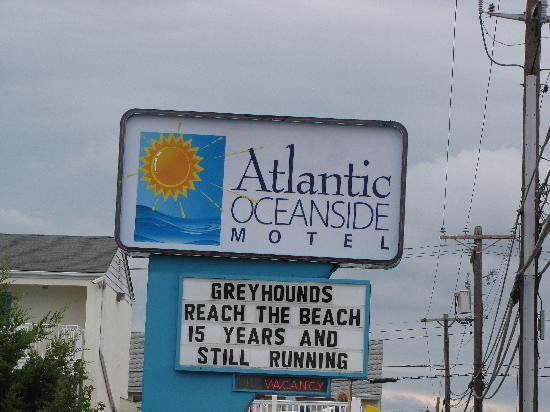 Dewey Beach, DE: Welcome from the Atlantic Oceanside