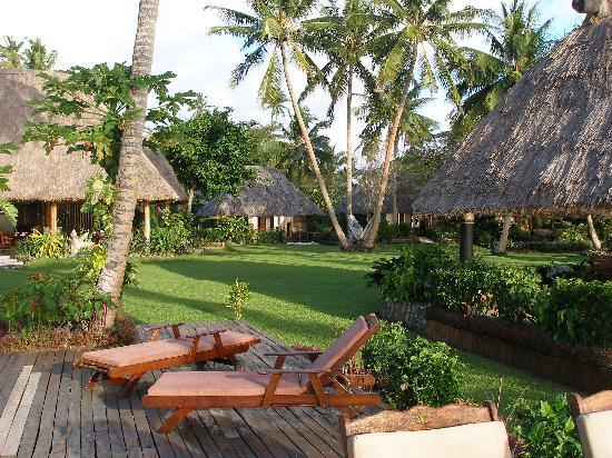 Paradise Taveuni: The front lawn