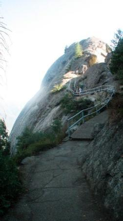 About to go climb Moro Rock @ Sequoia National Forest. It's nearly 400 step and a 300 foot rise