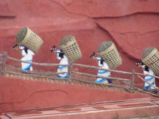 Lijiang Impressions Show: Impressions of Lijiang.