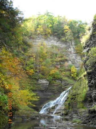 Robert Treman State Park: A waterfall in the creek that runs through the Rober H. Treeman state park