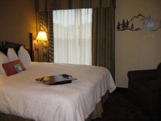 Hampton Inn & Suites Pigeon Forge On The Parkway: The bedroom in my suite - comfortable bed!