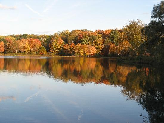 The Lodge at Chalk Hill: The Lake in the Fall