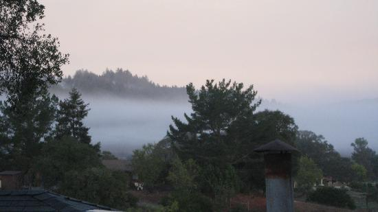 Grape Leaf Inn: Morning mist scene from our cottage porch.