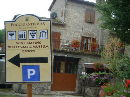PoggioBrandani : Winery