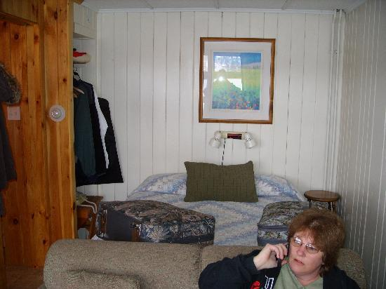 Adirondack Motel: part view of room