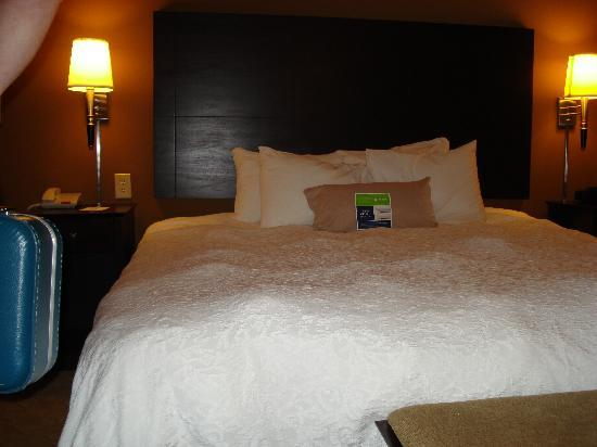 Hampton Inn Knoxville-East : King bed