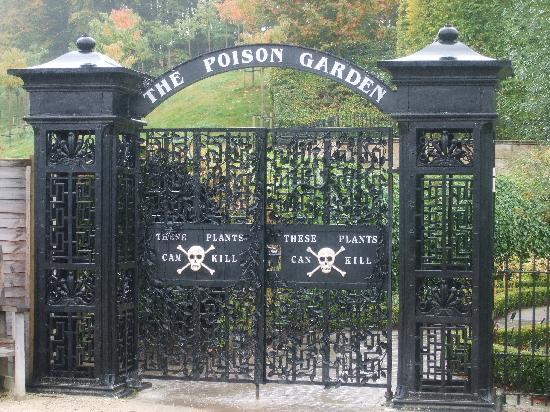Алнвик, UK: The Poison Garden, Alnwick Castle