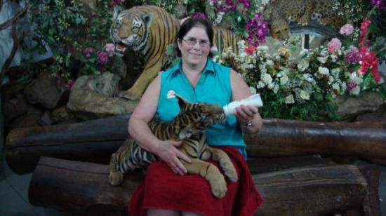 สวนเสือศรีราชา: Feeding a baby tiger cub