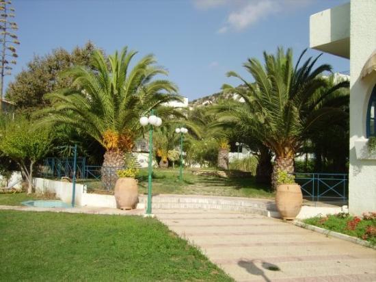 Dimitra Hotel Bewertungen Fotos Almyrida Kreta Tripadvisor