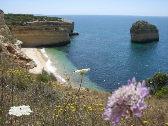 how to get from faro to lagos portugal