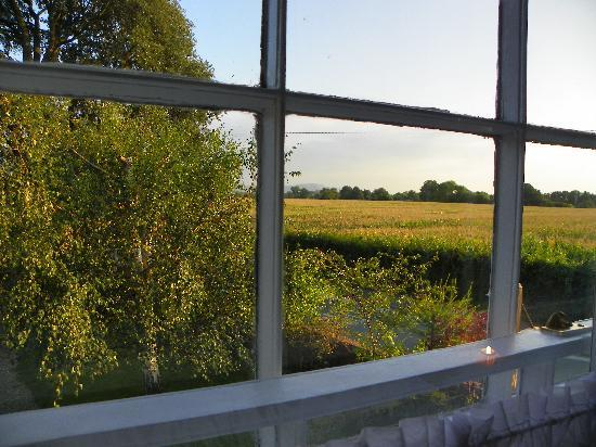 Ashfield Farmhouse Guesthouse: View From Window