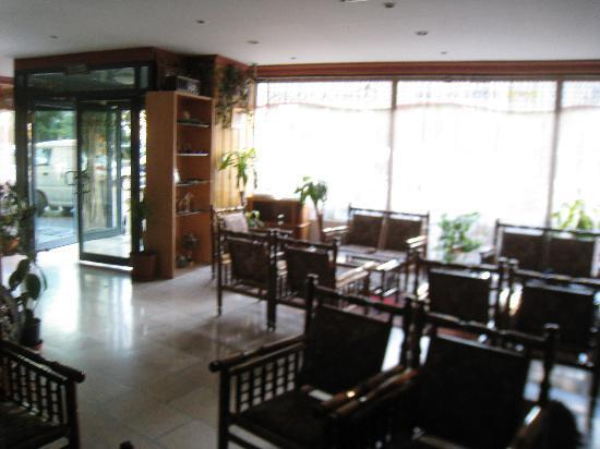 Hotel Ani and Sems: Reception area