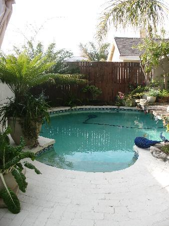 Point B Guest House: The pool
