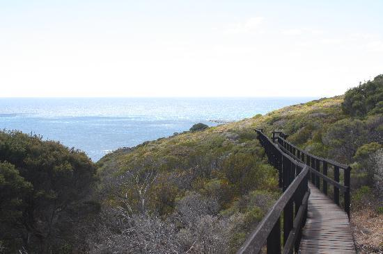 Cape Naturaliste - walkway to the Whale Point