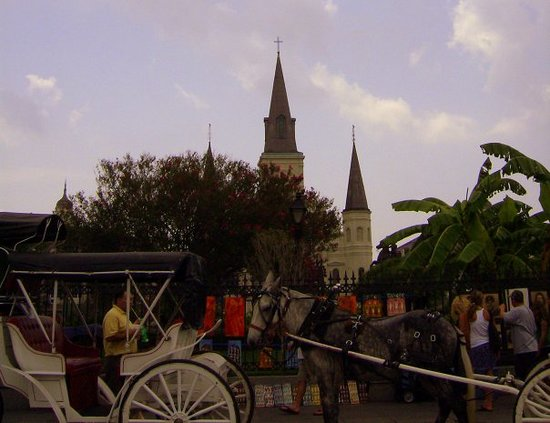 Lower garden district new orleans all you need to know before you go tripadvisor for Best hotels in garden district new orleans