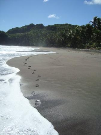 กาลิบิไช, โดมินิกา: #1 Beach, Calibishie, Caribbean