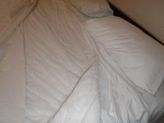 One Darling Harbour: doona - no cover?