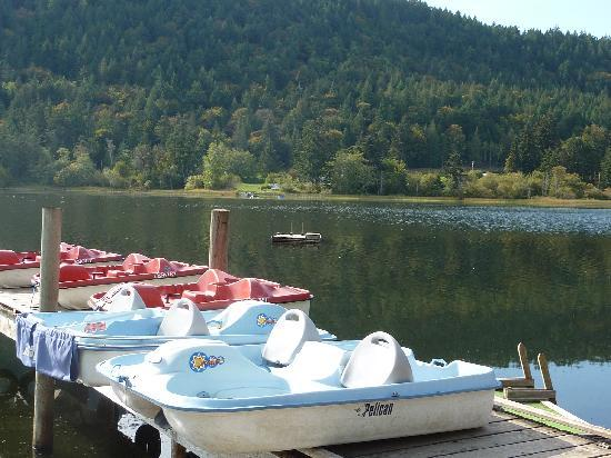 Green Acres Lakeside Resort Salt Spring Island 사진
