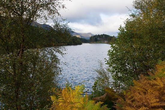 Shenval Bed & Breakfast : Le parc naturel de Glen Affric à proximité
