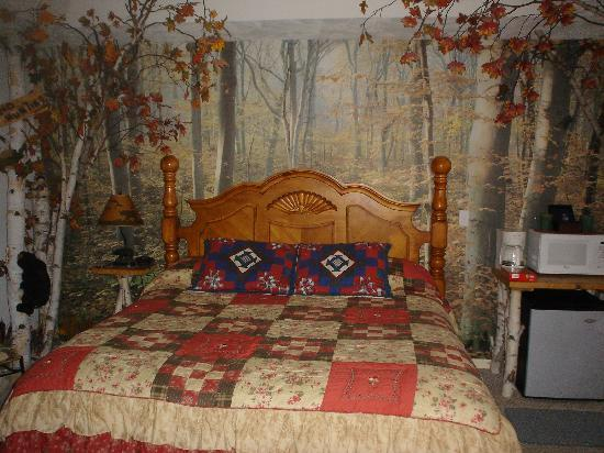 Bear Cove Inn: King Forest Room (we stayed here the other two nights)