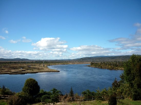 Chepu Adventures: View from the back of their lodge