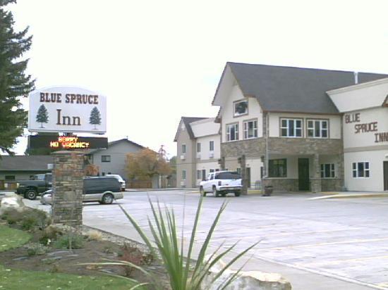 Blue Spruce Inn entry