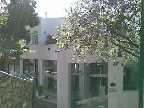 Hotel La Floridiana: L'entrée