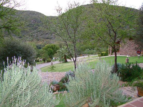 Stonebreaker Country Lodge : view across the gardens
