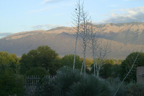 Corrales, NM: View of Mountains from Veranda