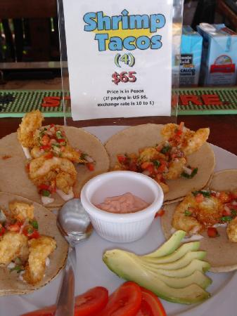 The Soggy Peso Bed & Cocktail: Tuesday's Shrimp Tacos