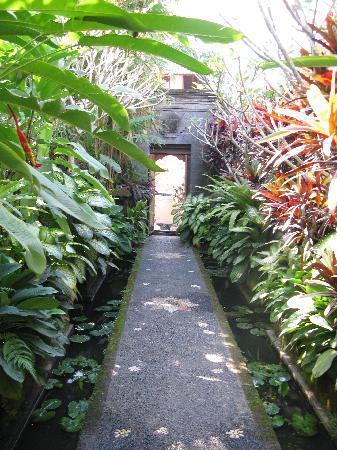 Villa Awang Awang: front walk