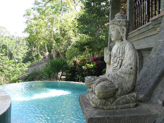 Villa Awang Awang: pool