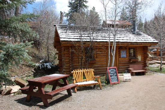 Our cabin at strawberry park hot springs picture of for Cabins in steamboat springs
