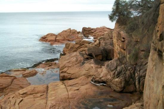 Фотография Coles Bay