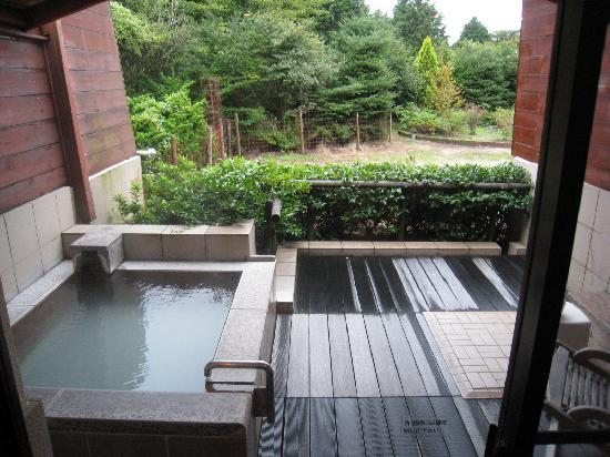 private onsen picture of hotel green plaza hakone hakone machi rh tripadvisor co nz