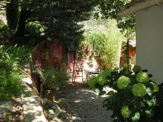Sous les Canniers : amazing plants ahhh